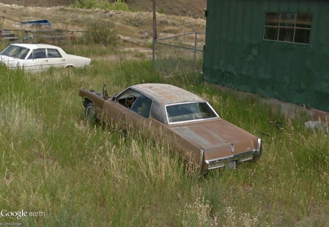 STREET VIEW : les vieilles voitures américaines Nature10
