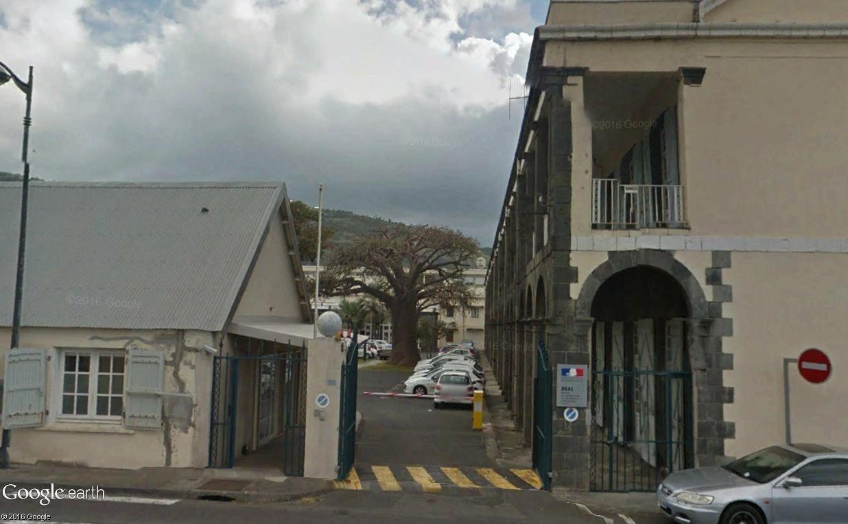 Végétation de la Réunion Stdeni10