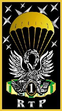 Insigne du 1er Rgt du train Parachutiste Insign10