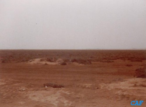 Mauritanie - Opération Lamentin Marcus14