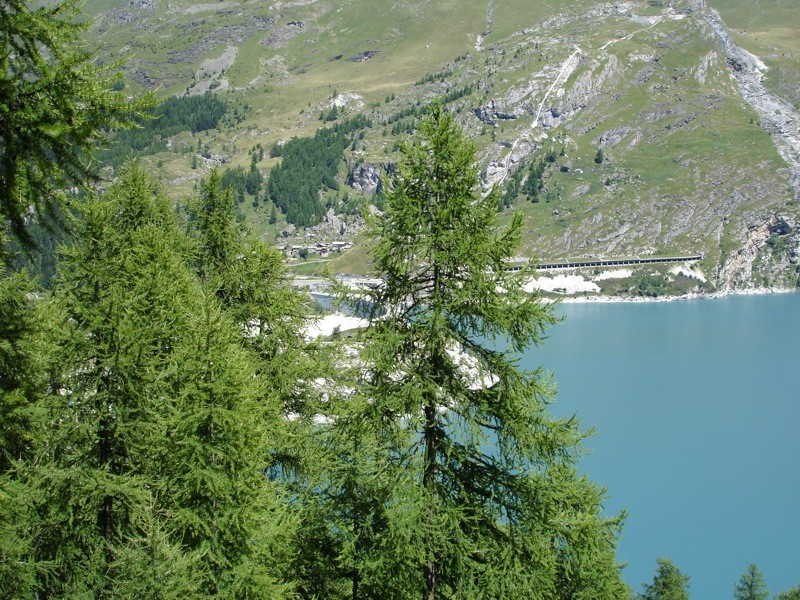 Tignes le Lac -> Tignes les Boisses Dsc04118