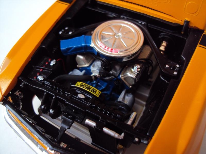 '70 Mustang Boss 302 Dsc00915