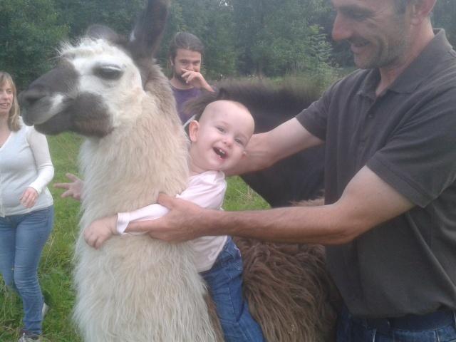 notre petite louise et le lama 2012-013