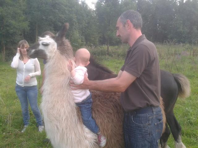 notre petite louise et le lama 2012-014