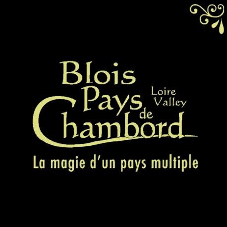 Souvenirs et Patrimoine 40mm  Blois14