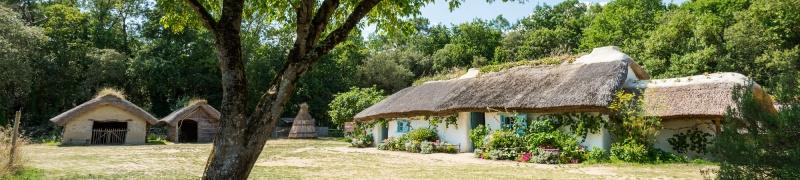 Saint-Hilaire-de-Riez (85270)  [Bois Juquaud / Dino's Park] Bourin10