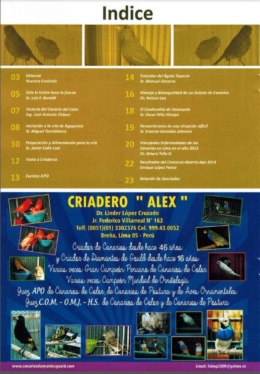 REVISTA APO n°16 216