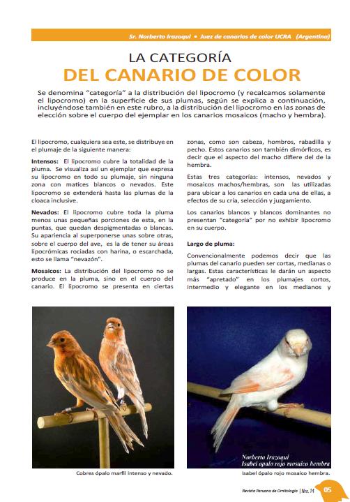 REVISTA APO n°14 312