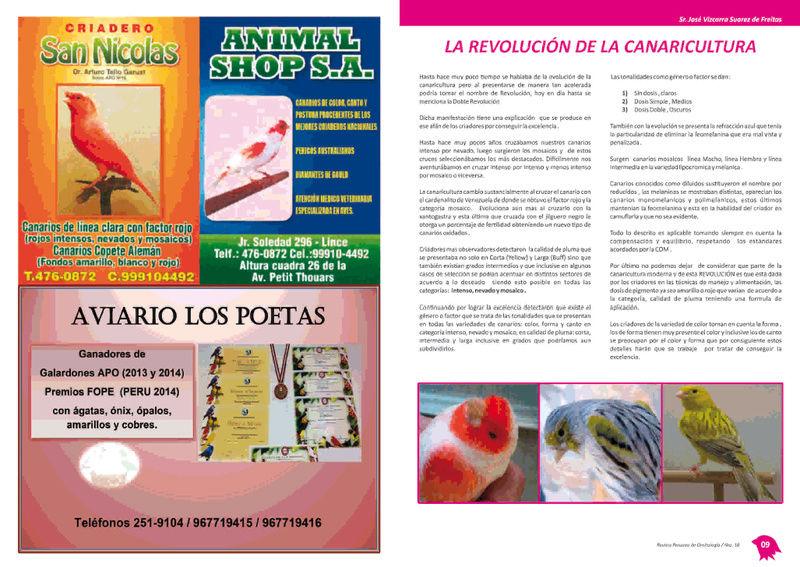 REVISTA APO n°18 513