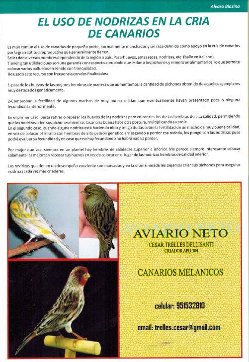 REVISTA APO n°17 514