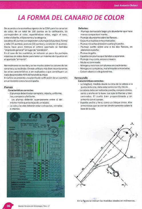 REVISTA APO n°17 615