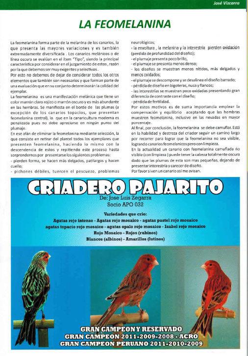 REVISTA APO n°17 817