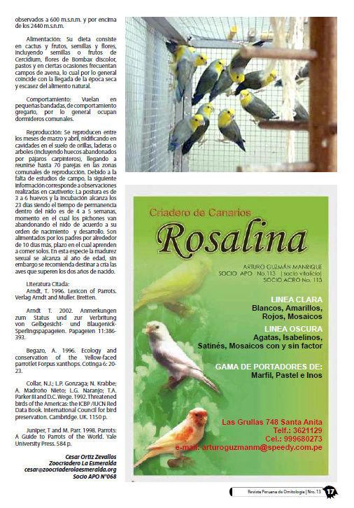 REVISTA APO n°13 822