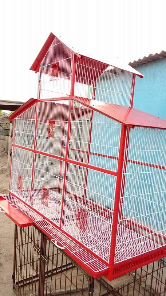 A la venta, Jaulas para Canarios y diversas aves silvestres Img-2019