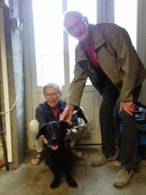 RYN (Croisée Labrador) Adopt103