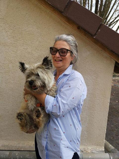 DAISY (Cairn Terrier) Adopt114