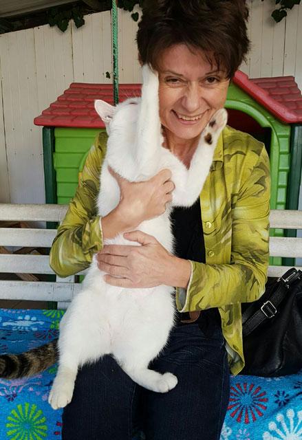 STING (Blanc et arlequin) Adopt118
