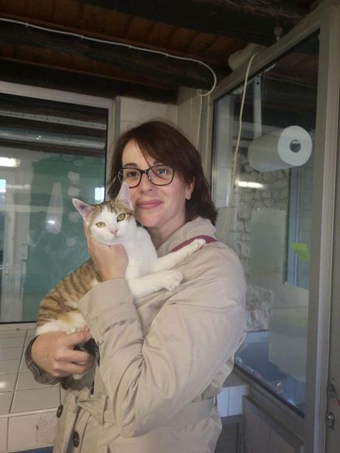 OLAF (Tabby et blanc) Adopt123