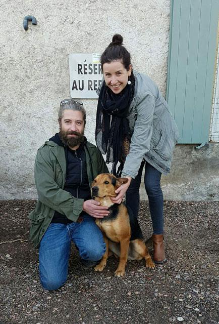 GANGSTER (Chien courant croisé Beauceron) Adopt139