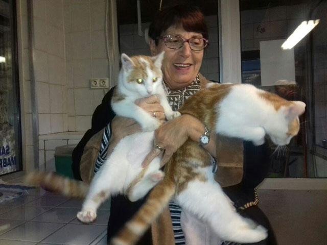 EMMA (Rousse et blanche) Adopt147