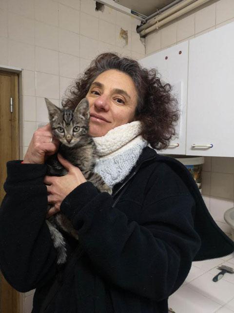 ORAPI (Tabby) Adopt176