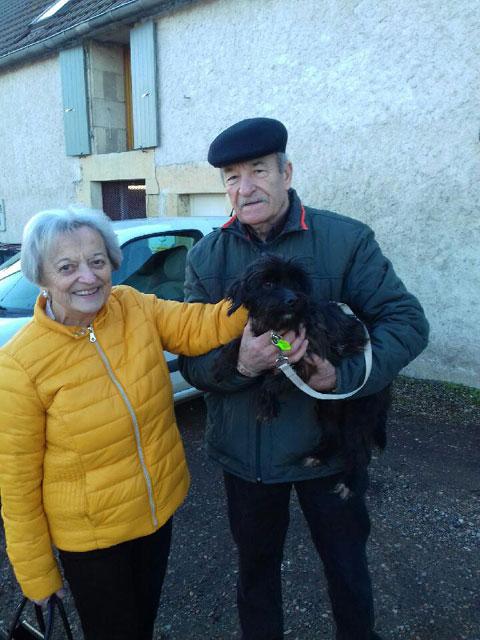 HARMONIE (Croisée Yorkshire Terrier) Adopt186