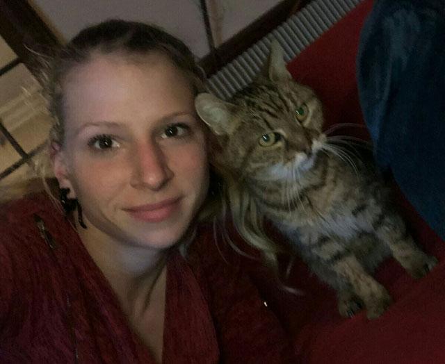 PIMOUSSE (Tabby) Adopt208