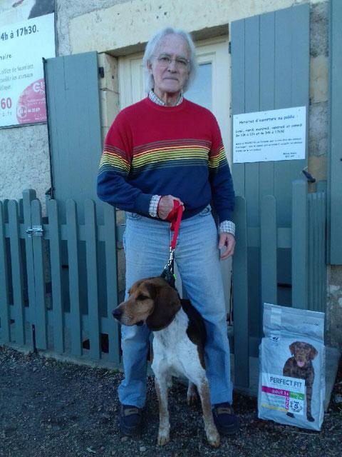 CELIO (Beagle croisé Basset) Adopt212