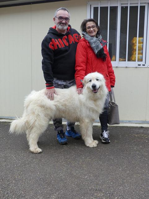 BELLA (Patou) Adopt231