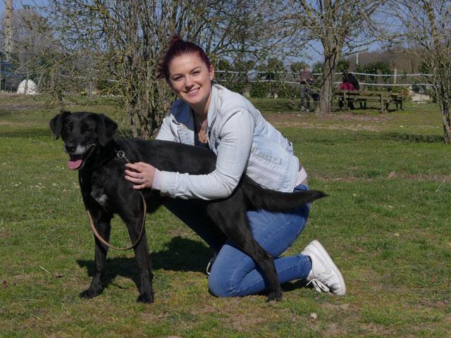 SOOKIE (Croisée Labrador) Adopt236
