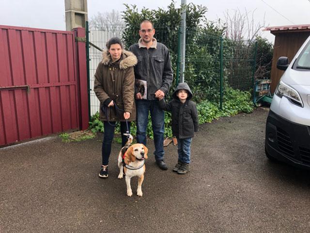 FIDJY (Beagle) Adopt458