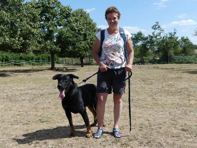 LUIGI (Beauceron) Adopt570