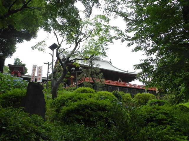 TR d'une balade au Japon en amoureux.  Dscn2512