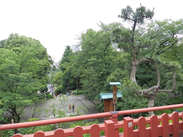 TR d'une balade au Japon en amoureux.  Dscn2514