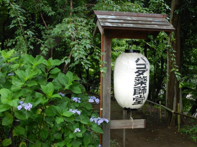 TR d'une balade au Japon en amoureux.  Dscn2515
