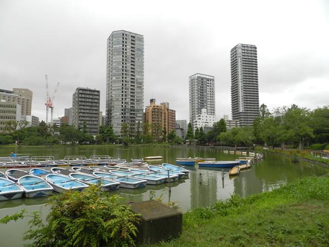 TR d'une balade au Japon en amoureux.  Dscn2520