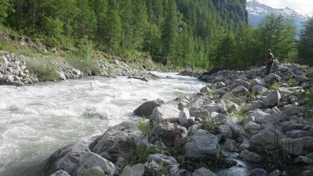 Alpes, juin 2020 [ANNULE CAUSE COVID] Imgp9721