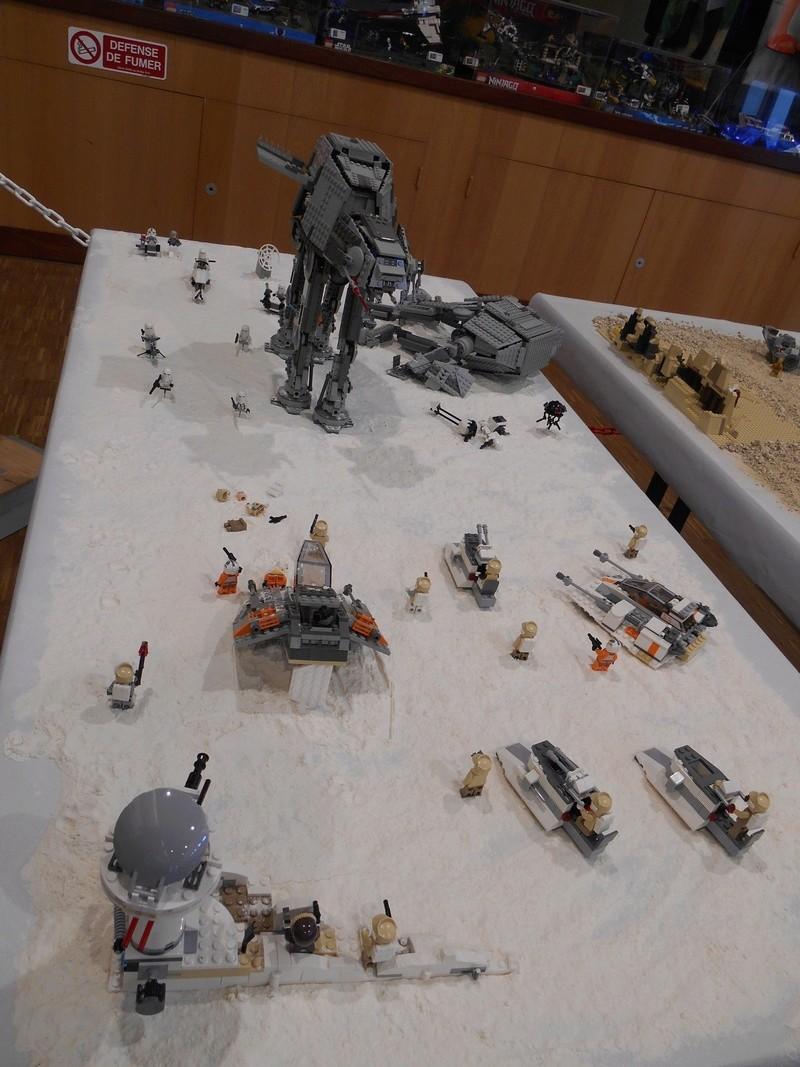 Expo jouets à Meslan Dscn3638