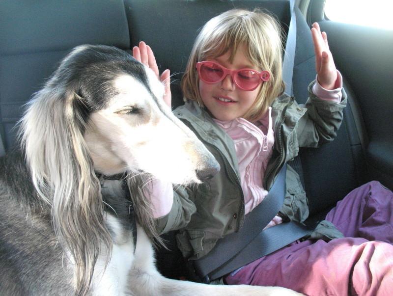 Les règles d'or d'un bon voyage avec son chien. Img_0037