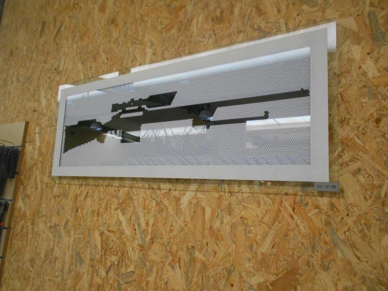 raziel-concept Dscn0011