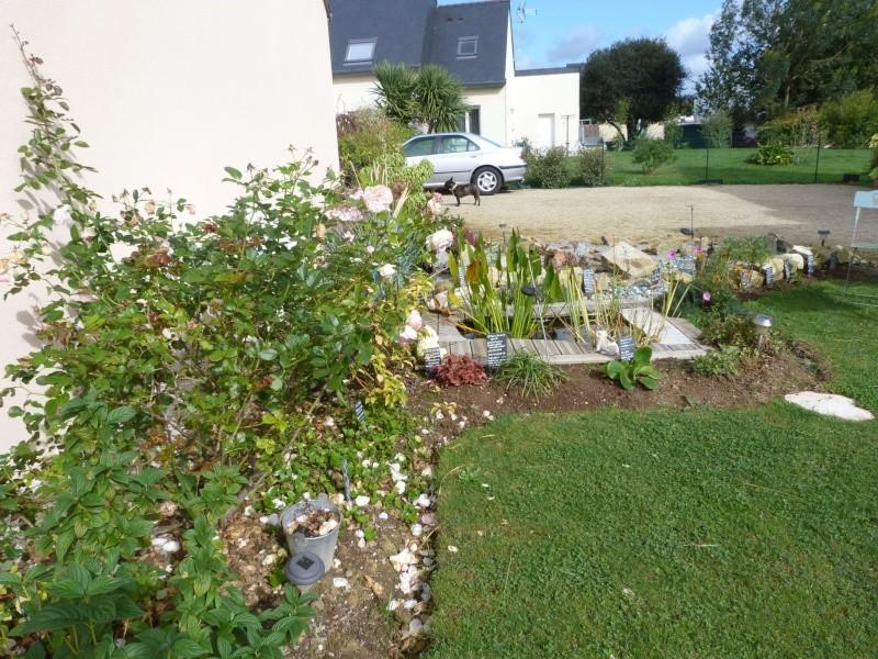 Album photo  du jardin des poëtes - Page 40 P1170677