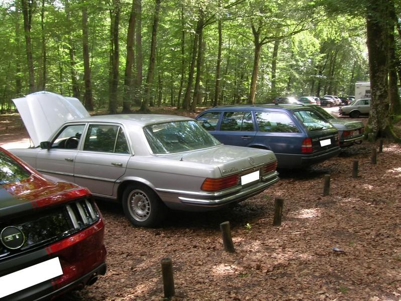 Fontainebleau 77 -  Dimanche 26 juin 2016 - Pique-nique familial en forêt de Barbizon Dscn9847