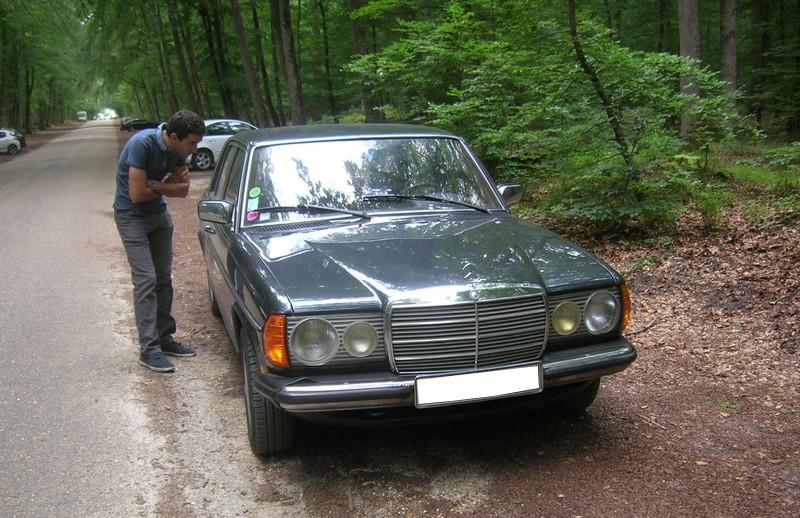 Fontainebleau 77 -  Dimanche 26 juin 2016 - Pique-nique familial en forêt de Barbizon Dscn9859