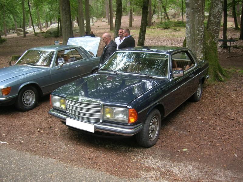 Fontainebleau 77 -  Dimanche 26 juin 2016 - Pique-nique familial en forêt de Barbizon Dscn9865