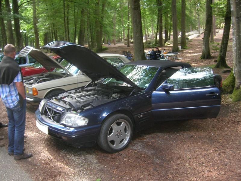 Fontainebleau 77 -  Dimanche 26 juin 2016 - Pique-nique familial en forêt de Barbizon Dscn9881