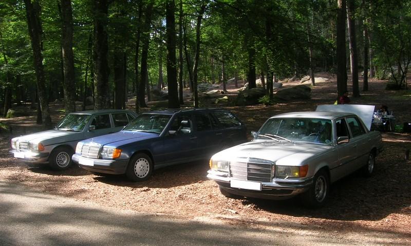 Fontainebleau 77 -  Dimanche 26 juin 2016 - Pique-nique familial en forêt de Barbizon Dscn9883