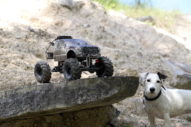 [Axial] SCAX10 Mud/Monster Truck Img_3813