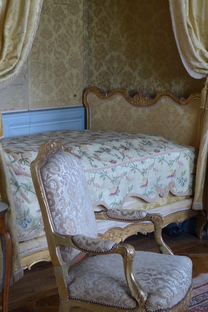 Le château de Champs sur Marne - Page 3 P1010931