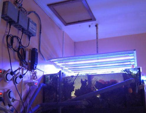 rampe led pour aquarium terrarium riparium vivarium Rampeh11