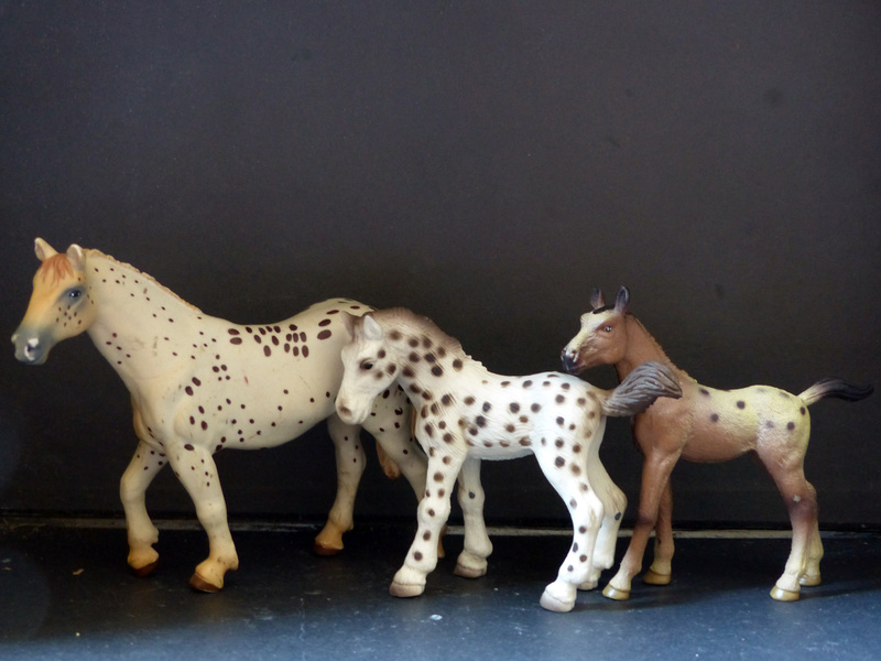 Schleichs en Vrac! (et autres chevaux à l'échelle) P1300511